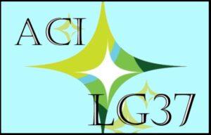"<a href=""https://acireland.ie/lumen-gentium-37-campaign/"" target=""_blank""> W3C Homepage <img src=""new-window.png"" alt=""new window""> </a>"